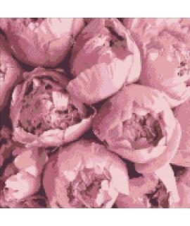 Алмазная вышивка Весенние эмоции Идейка AM6112
