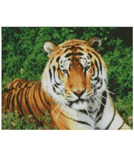 Алмазная вышивка Взгляд тигра 50х40 см Strateg FA10046