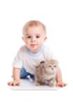 Дети 1 - 2 года